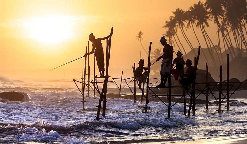 Правила въезда российских туристов на Шри-Ланку: считаем ПЦР-тесты