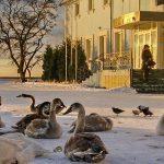 Туры на Балтику на майские праздники можно купить дешевле 40 тысяч рублей за двоих