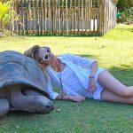 Рейс «Аэрофлота» на Сейшелы сэкономит туристам время, но не деньги