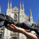 Посол: эпидобстановка позволяет возобновить ежедневные рейсы из России в Италию