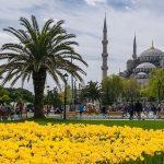 Билеты «Аэрофлота» в Стамбул на майские стремительно раскупают