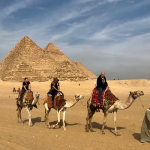 Авиасообщение с Египтом может возобновиться к лету