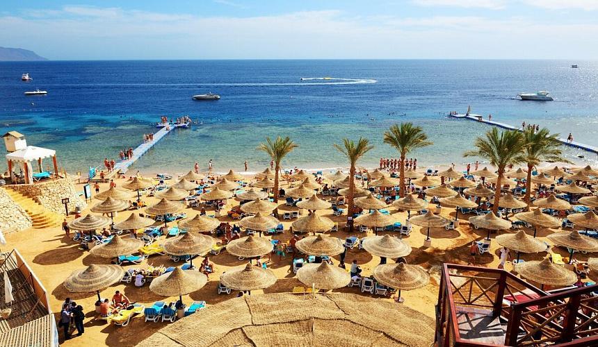 Частота авиарейсов на курорты Египта станет известна через месяц