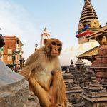 В Непале находится порядка 500 российских туристов
