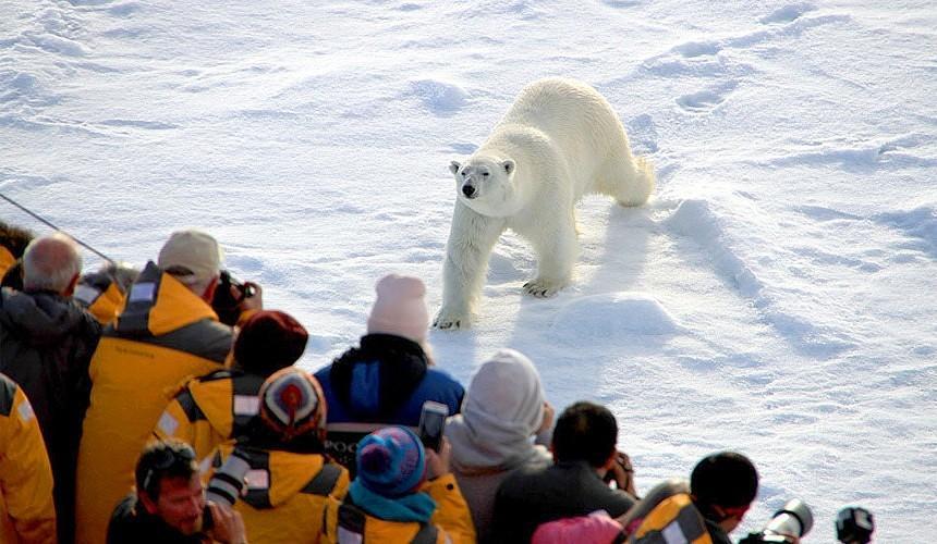 Дальний Восток и Арктика – в зоне интересов туристов. Надолго ли?