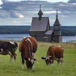 Совет Федерации одобрил законопроект о сельском туризме