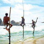 Шри-Ланка отменила обязательный карантин для привитых «Спутником V» туристов