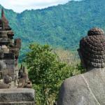 Индонезия признала российскую вакцину «Спутник V»