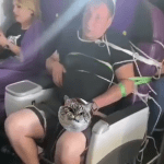 S7 дала комментарий по поводу справившего нужду в салоне самолета пьяного пассажира