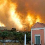 Остров Родос охватил сильный лесной пожар
