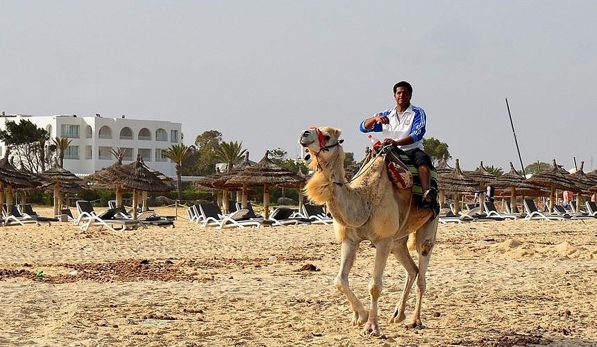 Скоро ли возобновится авиасообщение с Тунисом?